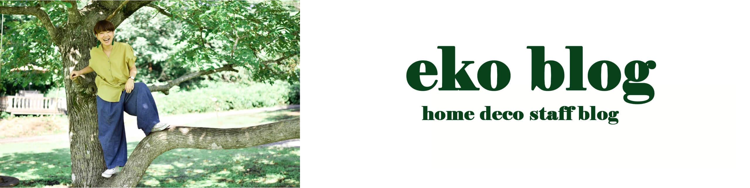 eko blog
